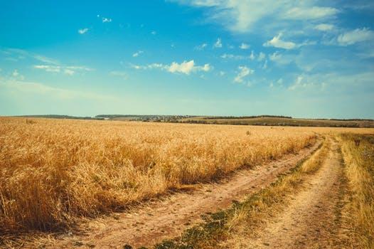 土地使用权私下转让可以吗,土地使用权转让怎样才合法?