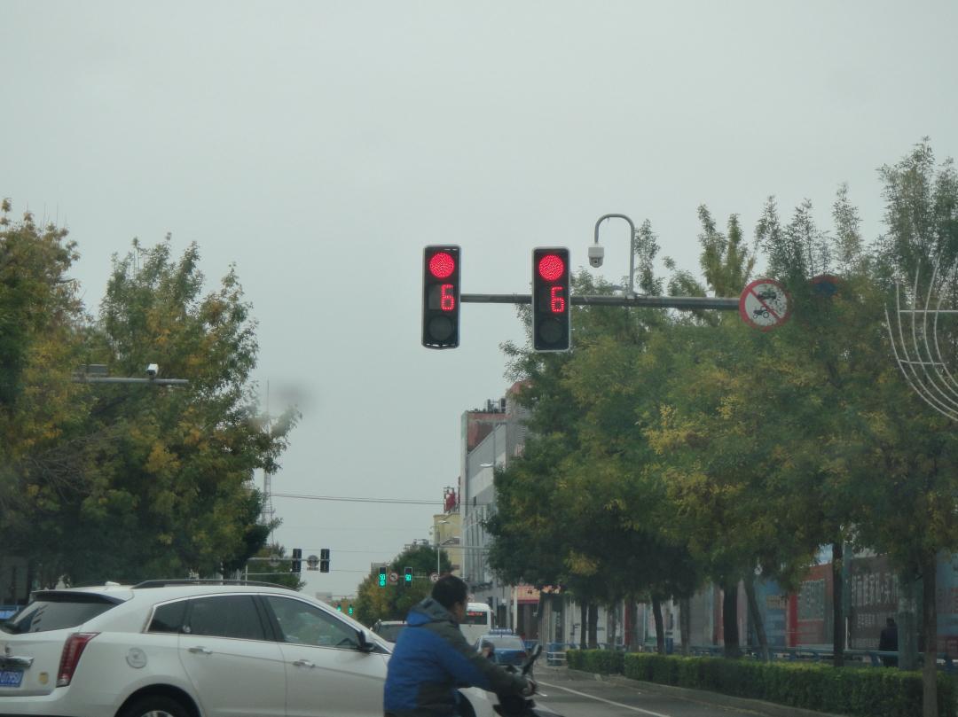 开车撞死了闯红灯的行人,机动车要不要负责?