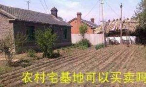 2019年农村房屋宅基地可以自由买卖吗?买卖合同怎么写?