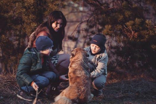 继子女享有继承权吗,需要满足什么条件?