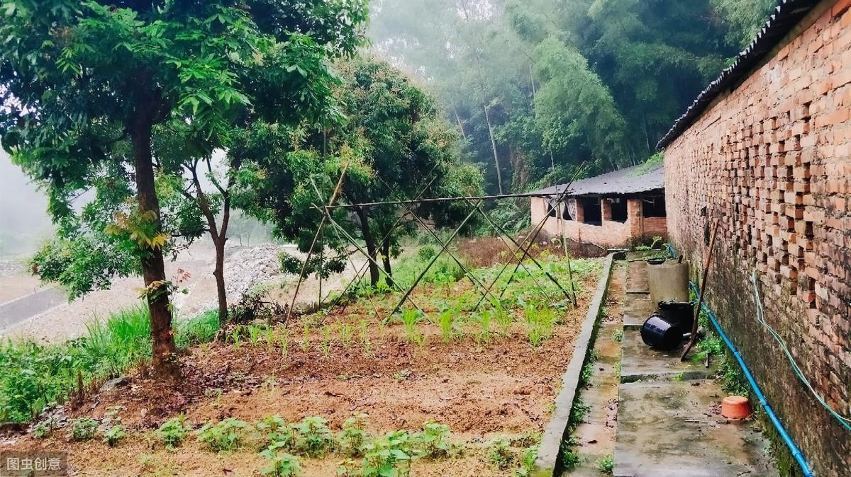 在农村女儿可以继承宅基地吗?多个子女发生纠纷怎么办?