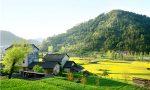 2021新农保可以转社保吗?新农保转社保有哪些流程?